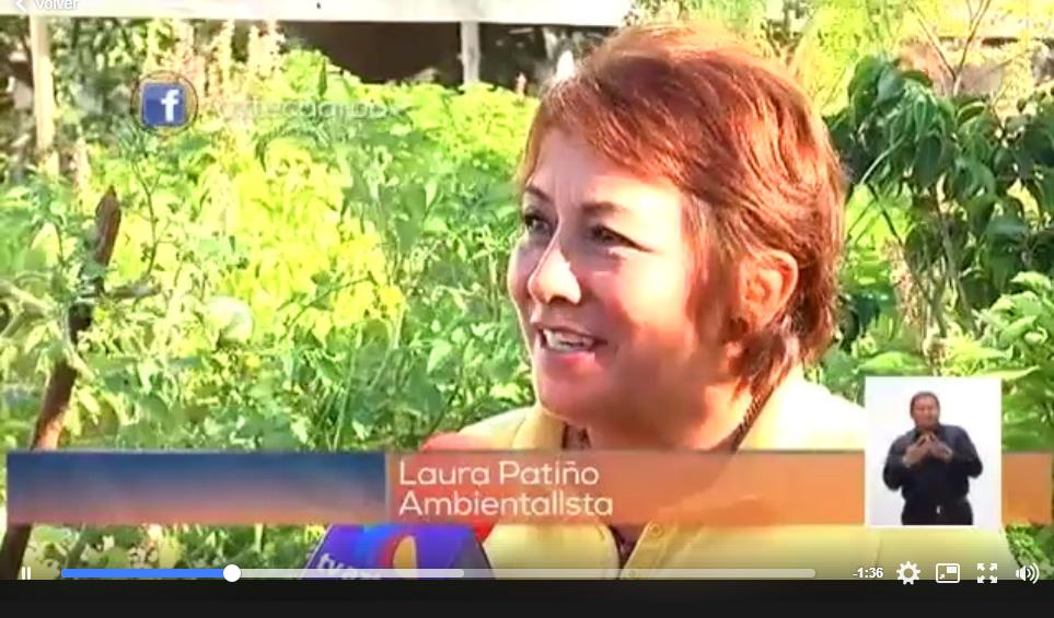 Reportaje sobre Huertos Urbanos en TV Azteca